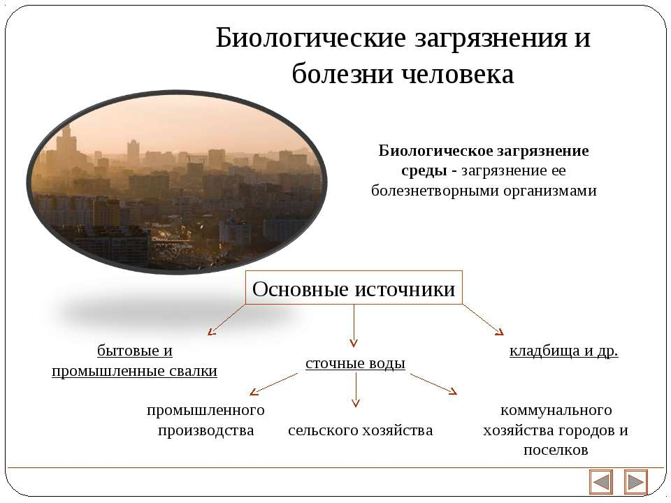 Биологическое загрязнение среды - загрязнение ее болезнетворными организмами ...