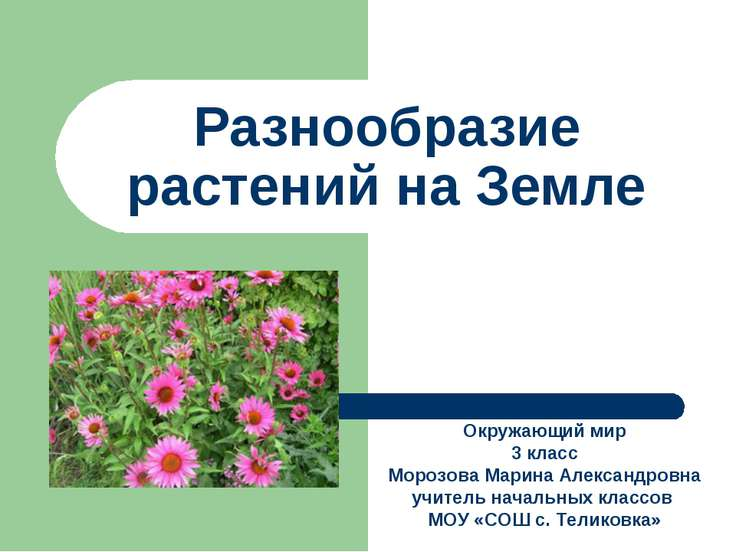 Разнообразие растений на Земле Окружающий мир 3 класс Морозова Марина Алексан...