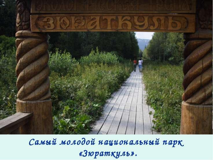 Самый молодой национальный парк «Зюраткуль».
