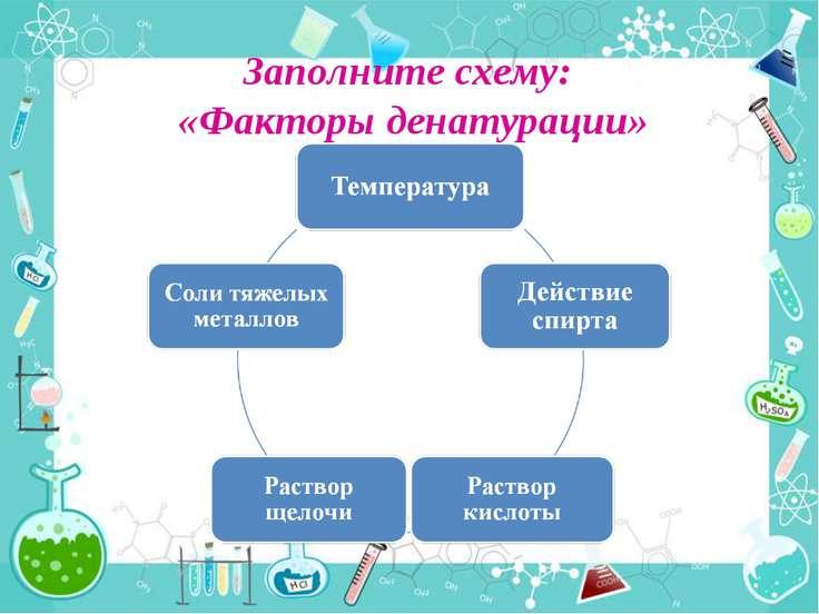 Заполните схему: «Факторы денатурации»