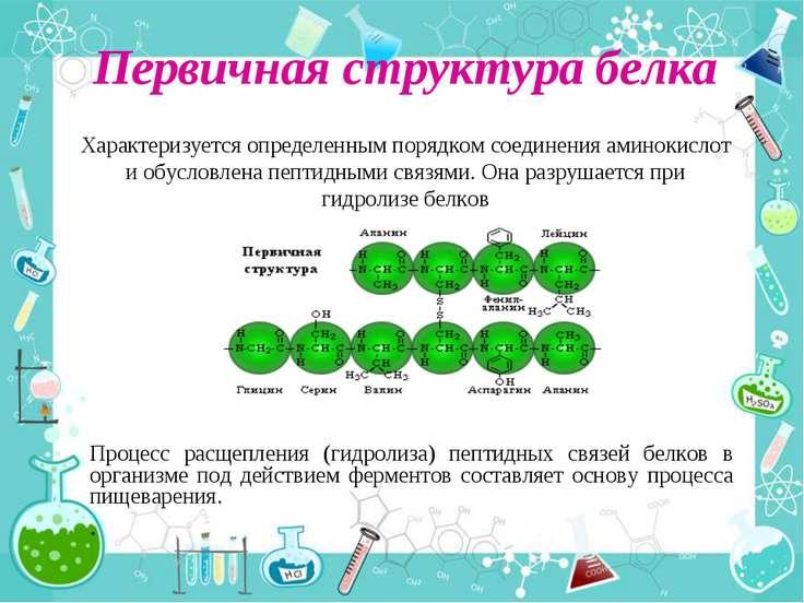 Первичная структура белка Процесс расщепления (гидролиза) пептидных связей бе...