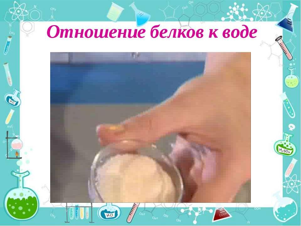 Отношение белков к воде