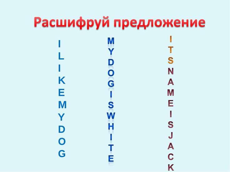 I L I K E M Y D OG
