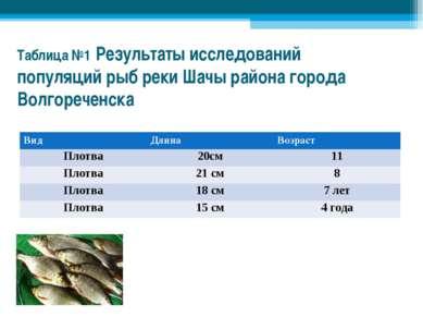 Таблица №1 Результаты исследований популяций рыб реки Шачы района города Волг...