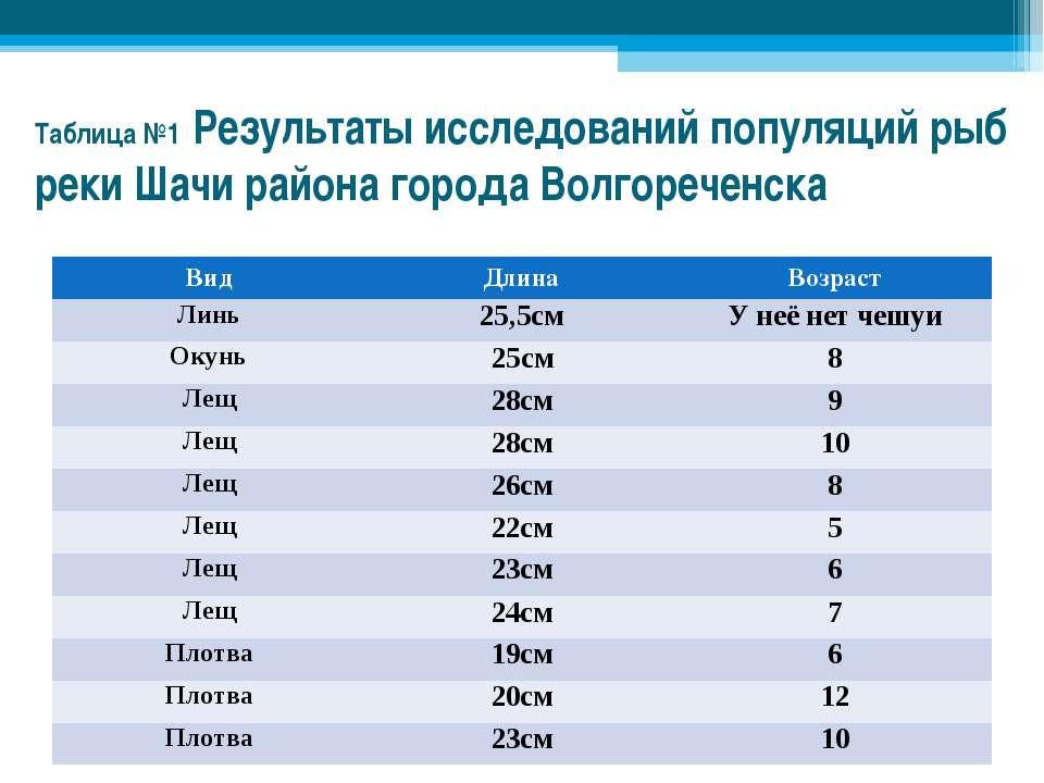 Таблица №1 Результаты исследований популяций рыб реки Шачи района города Волг...