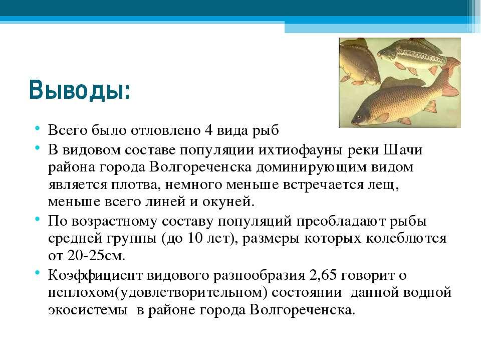 Выводы: Всего было отловлено 4 вида рыб В видовом составе популяции ихтиофаун...