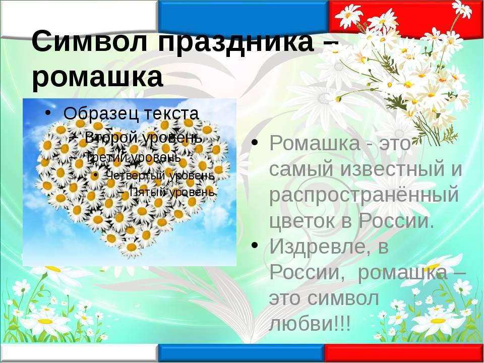 Символ праздника – ромашка Ромашка - это самый известный и распространённый ц...