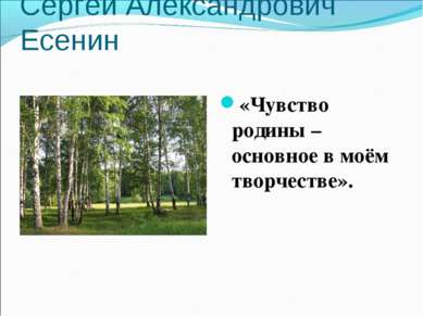 Сергей Александрович Есенин «Чувство родины – основное в моём творчестве».