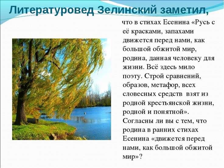 Литературовед Зелинский заметил, что в стихах Есенина «Русь с её красками, за...