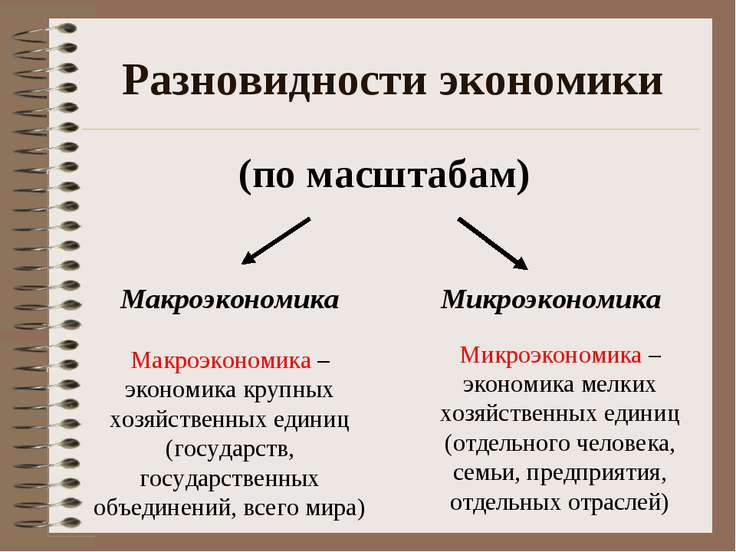 Разновидности экономики (по масштабам) Макроэкономика Микроэкономика Макроэко...