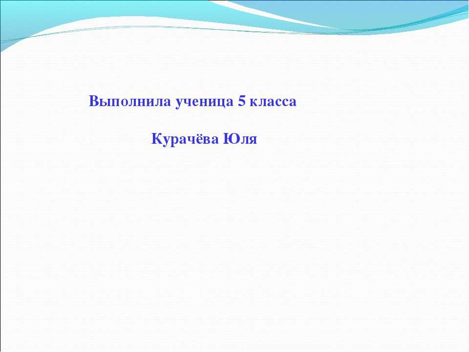 Выполнила ученица 5 класса Курачёва Юля