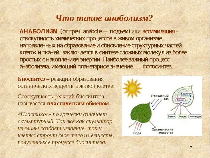 * Что такое анаболизм? АНАБОЛИЗМ (от греч. anabole — подъем) или ассимиляция ...