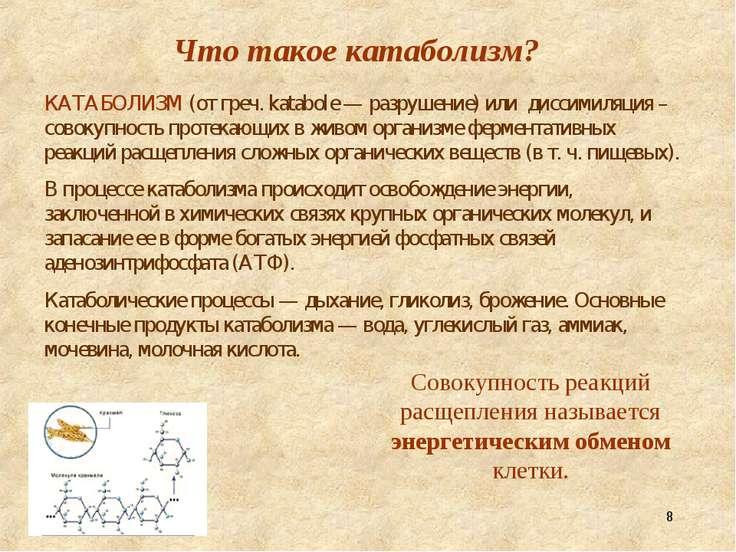 * Что такое катаболизм? КАТАБОЛИЗМ (от греч. katabole — разрушение) или дисси...