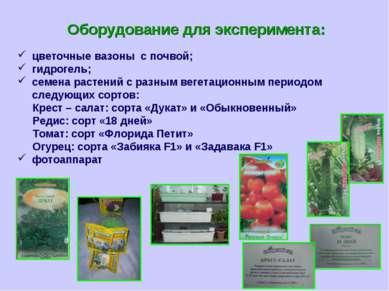 Оборудование для эксперимента: цветочные вазоны с почвой; гидрогель; семена р...