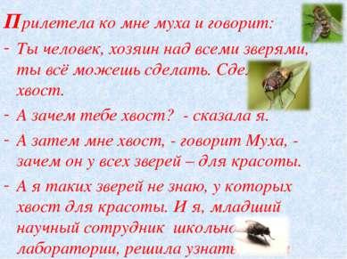 Прилетела ко мне муха и говорит: Ты человек, хозяин над всеми зверями, ты всё...