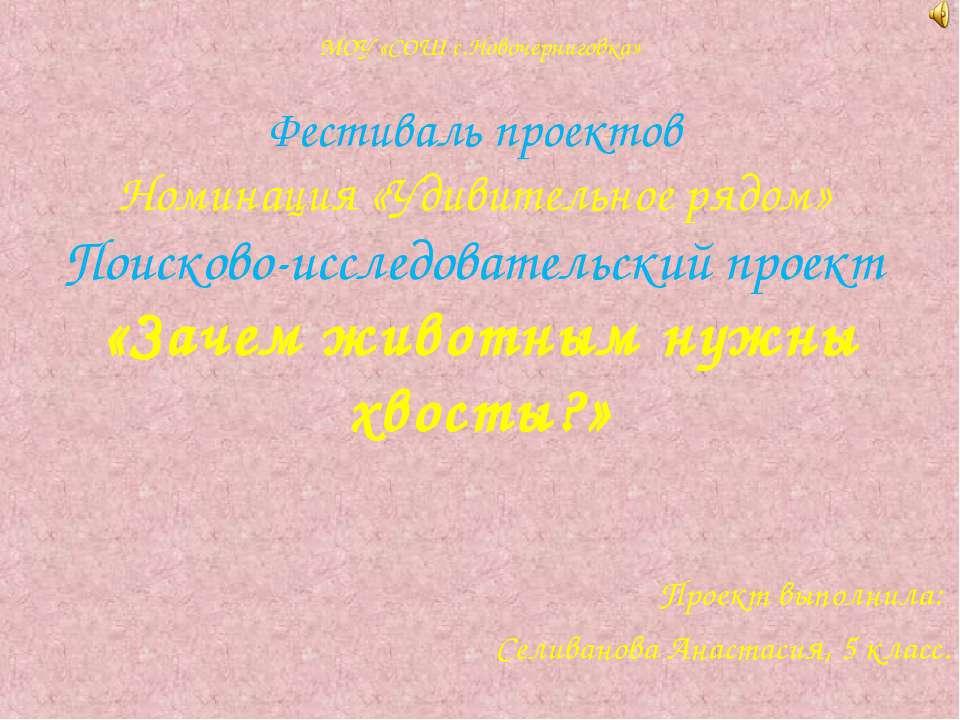 МОУ «СОШ с.Новочерниговка» Фестиваль проектов Номинация «Удивительное рядом» ...