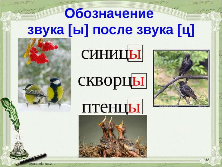 * Обозначение звука [ы] после звука [ц] синицы скворцы птенцы