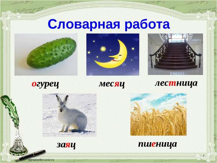 Словарная работа огурец заяц лестница месяц пшеница *