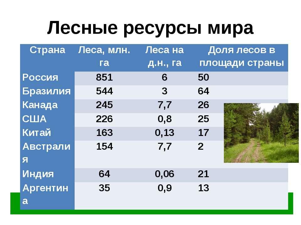 Лесные ресурсы мира Лесами занято 28% суши планеты – 3,7 млрд. га Страна Леса...