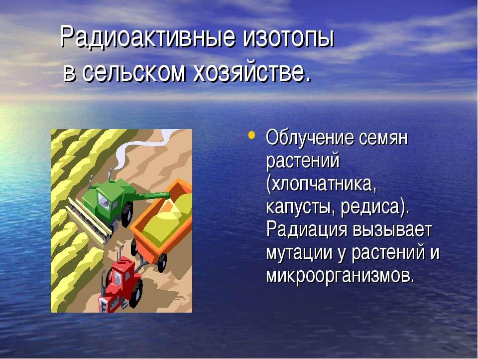 Радиоактивные изотопы в сельском хозяйстве. Облучение семян растений (хлопчат...