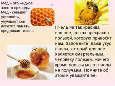 итог Пчела не так красива внешне, но как прекрасна пользой, которую приносит ...