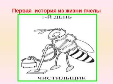 Первая история из жизни пчелы