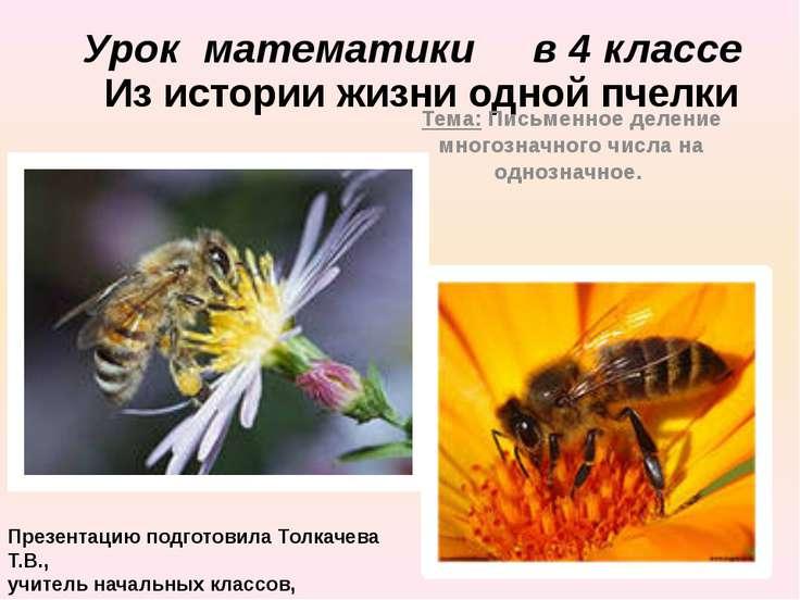 Из истории жизни одной пчелки Тема: Письменное деление многозначного числа на...