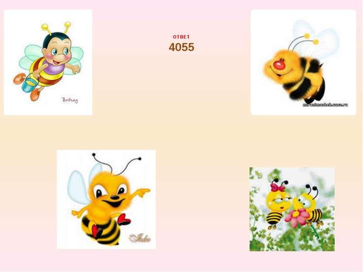 ОТВЕТ 4055
