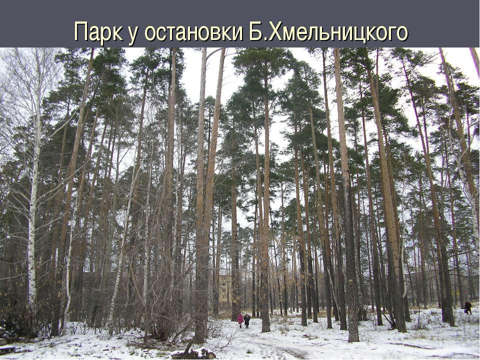 Парк у остановки Б.Хмельницкого
