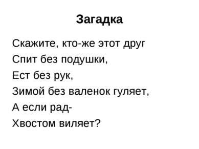 Загадка Скажите, кто-же этот друг Спит без подушки, Ест без рук, Зимой без ва...