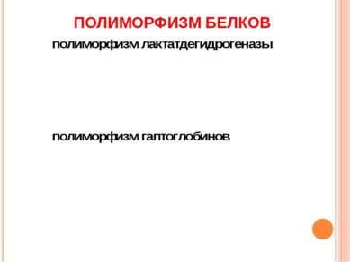 ПОЛИМОРФИЗМ БЕЛКОВ