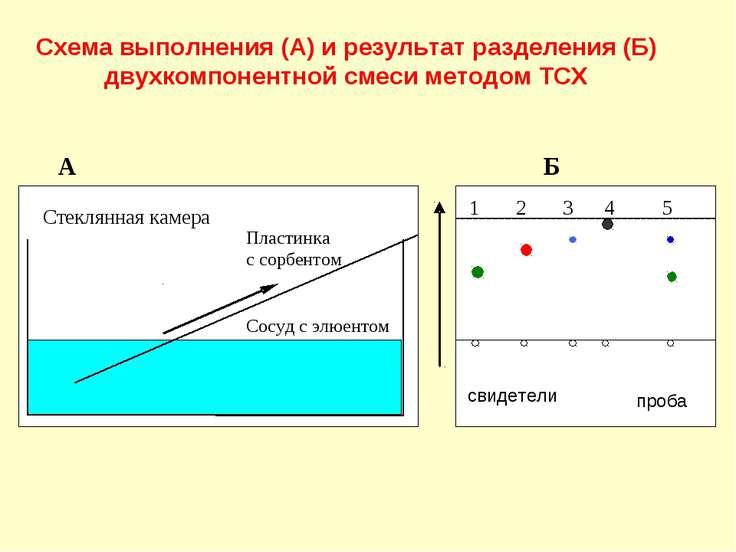 Схема выполнения (А) и результат разделения (Б) двухкомпонентной смеси методо...