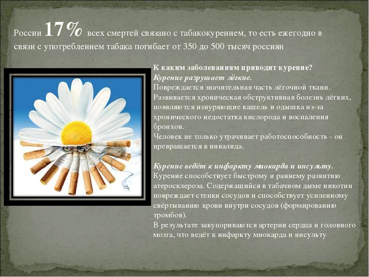 России 17% всех смертей связано с табакокурением, то есть ежегодно в связи с ...