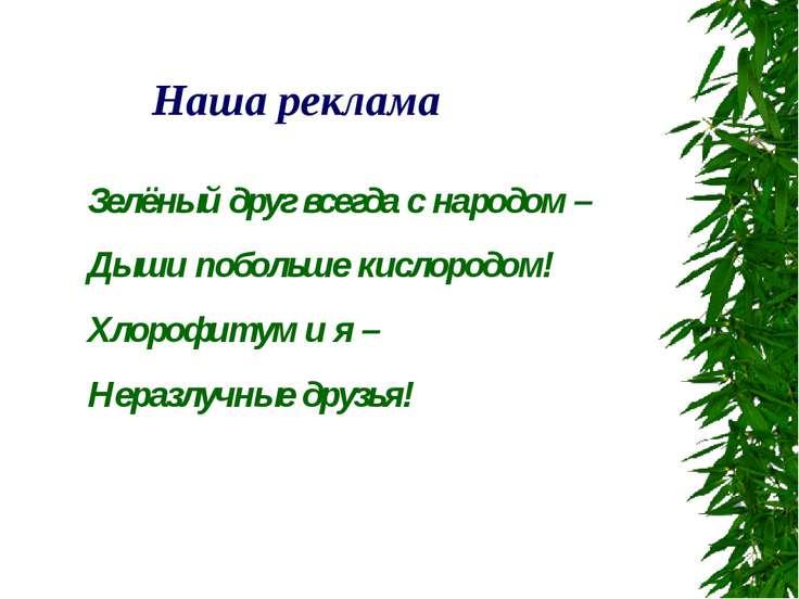 Зелёный друг всегда с народом – Дыши побольше кислородом! Хлорофитум и я – Не...