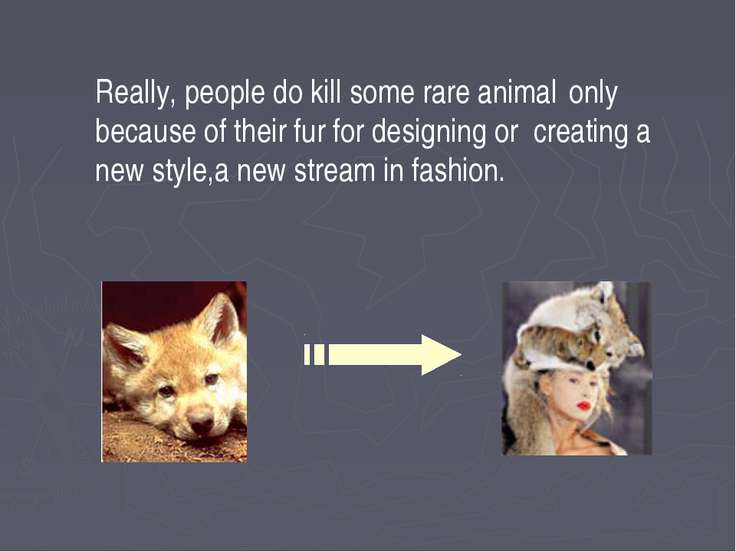 Really, people do kill some rare animal only because of their fur for designi...
