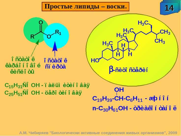 """14 Простые липиды – воски. А.М. Чибиряев """"Биологически активные соединения жи..."""