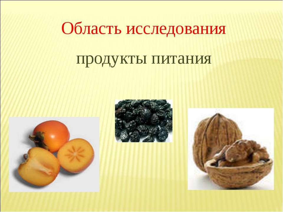 Область исследования продукты питания