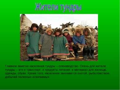 Главное занятие населения тундры – оленеводство. Олень для жителя тундры – эт...
