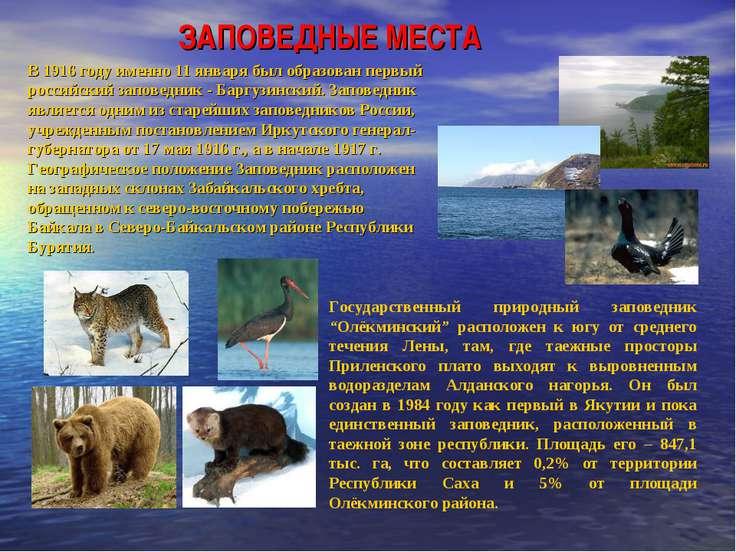 В 1916 году именно 11 января был образован первый российский заповедник - Бар...