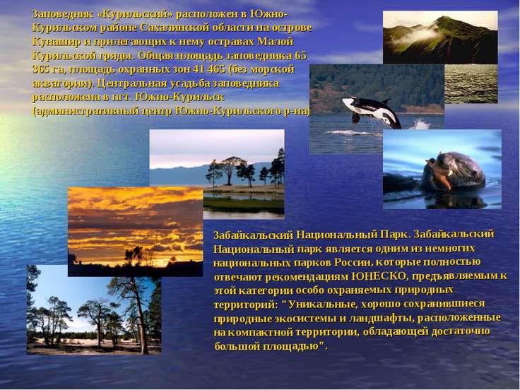 Забайкальский Национальный Парк. Забайкальский Национальный парк является одн...
