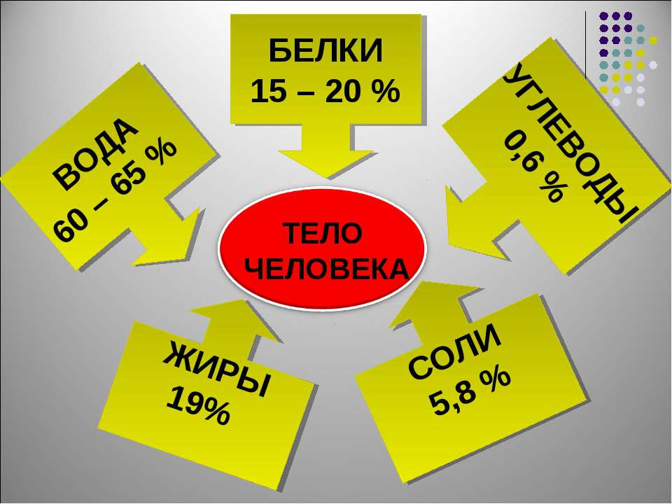 БЕЛКИ 15 – 20 % ВОДА 60 – 65 % УГЛЕВОДЫ 0,6 % ЖИРЫ 19% СОЛИ 5,8 %