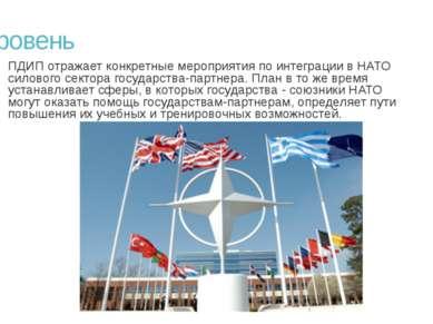 3 уровень ПДИП отражает конкретные мероприятия по интеграции в НАТО силового ...