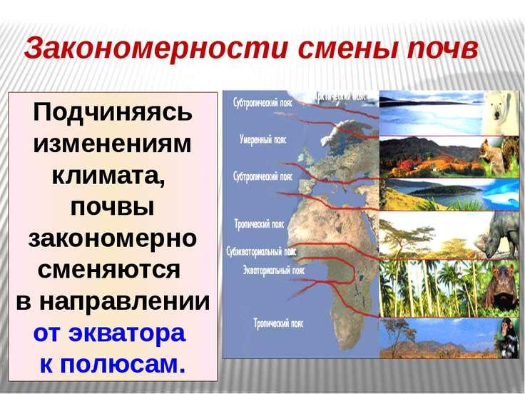 Закономерности смены почв Подчиняясь изменениям климата, почвы закономерно см...