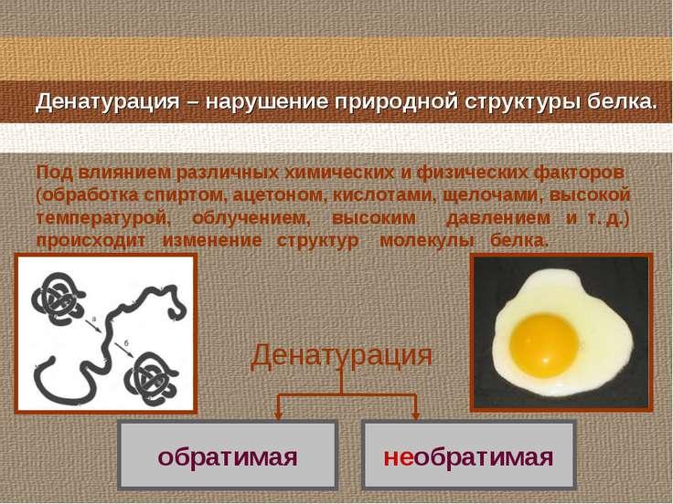 Денатурация – нарушение природной структуры белка. Денатурация Под влиянием р...