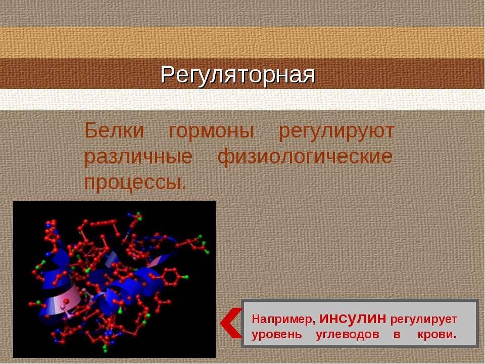 Регуляторная Белки гормоны регулируют различные физиологические процессы. Нап...