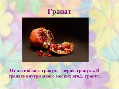 Гранат От латинского грануле – зерно, гранула. В гранате внутри много мелких ...