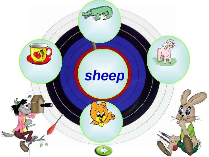 z sheep y c s