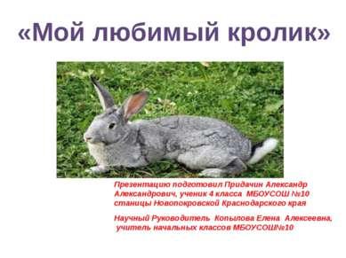 Презентацию подготовил Придачин Александр Александрович, ученик 4 класса МБОУ...