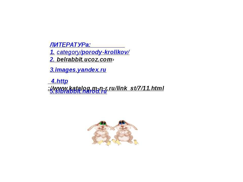 ЛИТЕРАТУРа: 1. category/porody-krolikov/ 2. belrabbit.ucoz.com› 3.images.yand...
