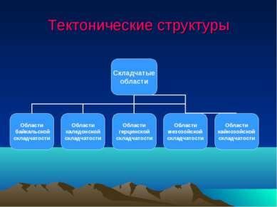 Тектонические структуры
